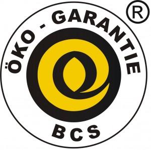 Logo BCS internacional 2015