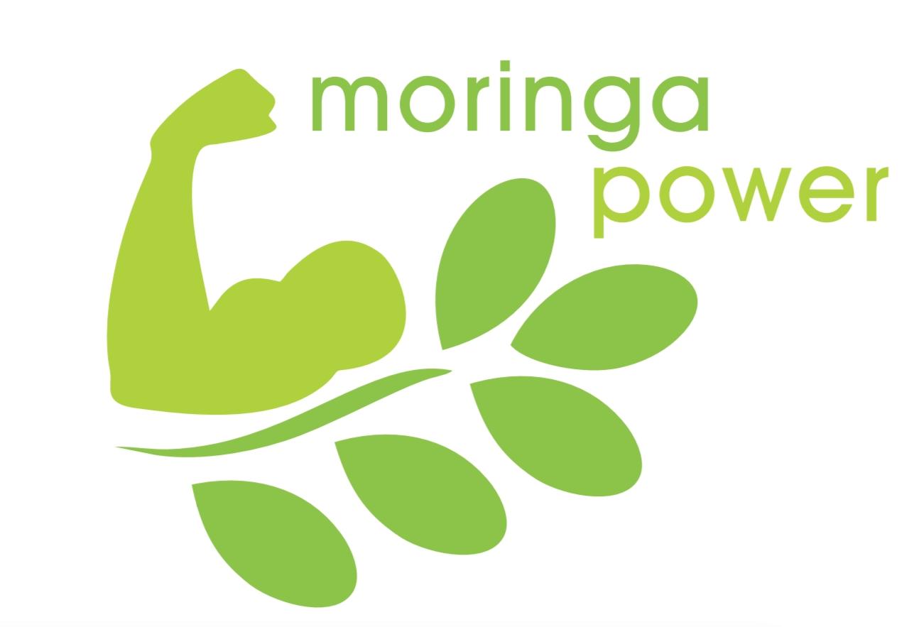 BIO Moringa Oleifera – Top Qualität zum besten Preis!